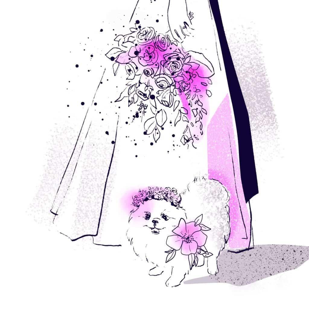 1583880173 594 Como planificar una boda que acepte mascotas • La Guia