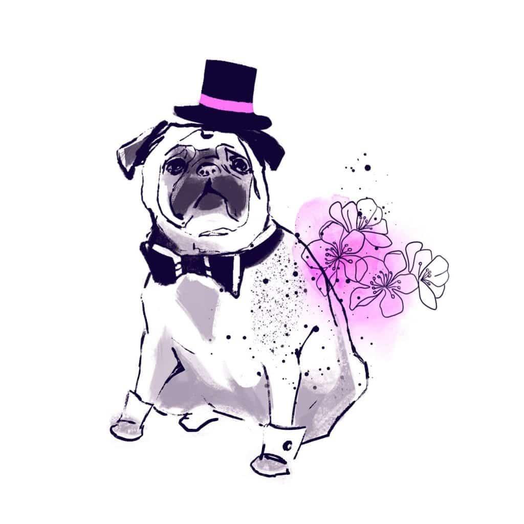 1583880173 60 Como planificar una boda que acepte mascotas • La Guia